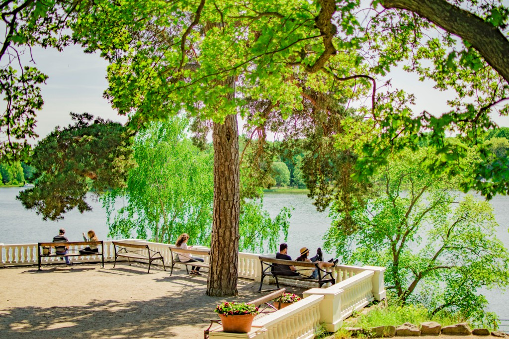 red 4 trädgården 19 maj 18